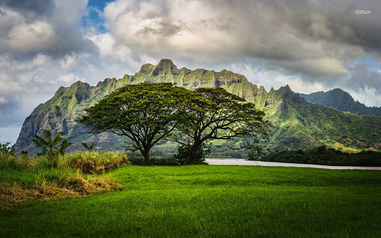 18321-mountains-in-oahu-1680x1050-nature-wallpaper