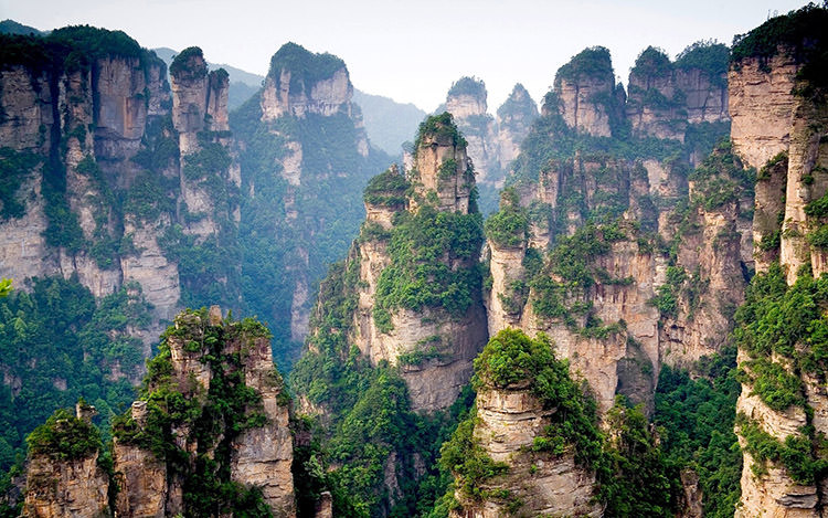 Chinese-mountain-cliff-top-forest-trees_1920x1200