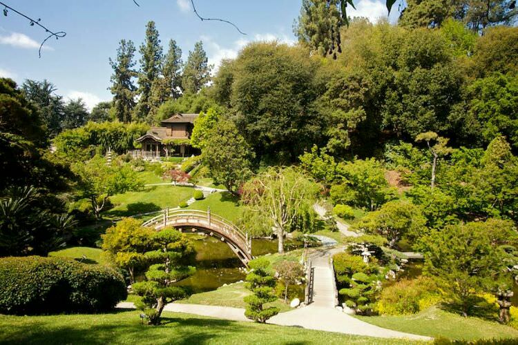 Huntington_library3.jpg