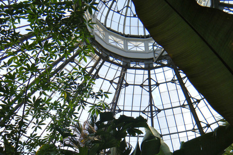 conservatory-roof-sq