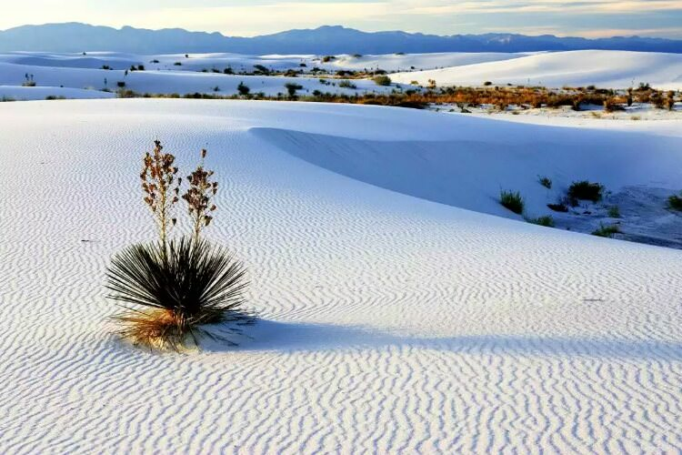 wpid-white-sands-national-monument.jpg