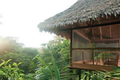خانههای درختی رویایی برای ماه عسل