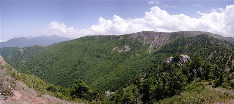 کوه تاورنراب
