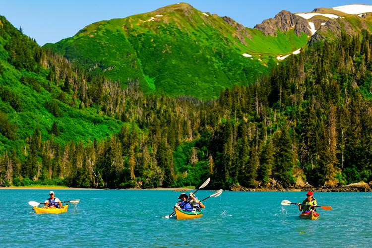 اقامتگاه Hideaway Cove Wilderness، آلاسکا