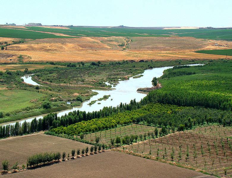 بین النهرین