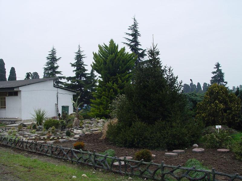 باغ اکولوژی نوشهر