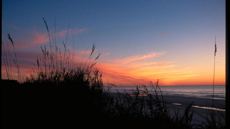 کارولینای جنوبی Pawleys Island