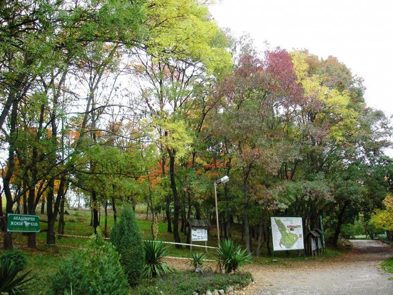 باغ گیاه شناسی دانشگاه وارنا