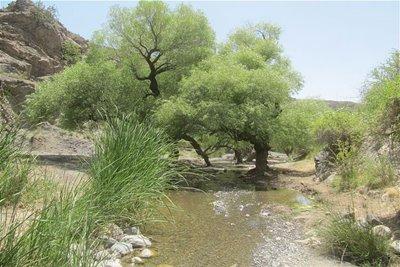 تفرجگاه گرماب خراسان، گردشگاهی بکر با چشمههای معدنی آب گرم