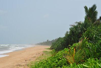 حقایق جالب درباره بنتوتا؛ سریلانکا