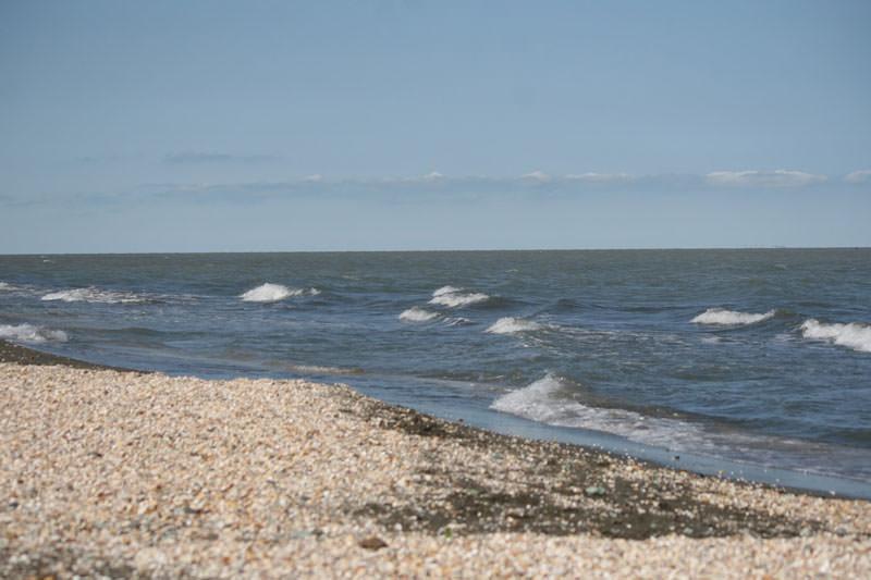 ساحل صدف آستارار